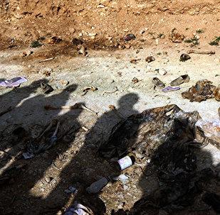 媒体:美国特种部队人员正在叙寻找被IS武装分子杀害的美国人的坟墓