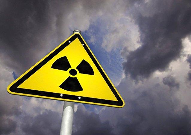 印度和越南可能签署有关和平利用原子能合作框架协议