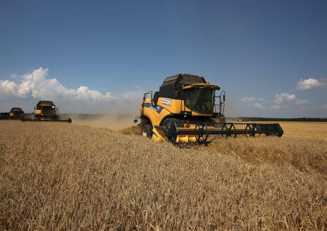 俄计划第一阶段从外贝加尔枢纽每年向中国供应200到300万吨粮食