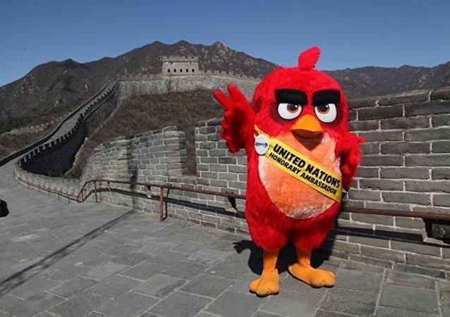 带有愤怒的小鸟图样的照片出现在北京郊区的长城上