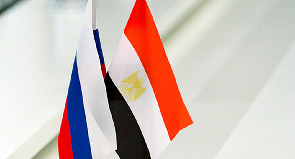 俄商务代表:俄正考虑3个在埃及设立工业区的可能地点