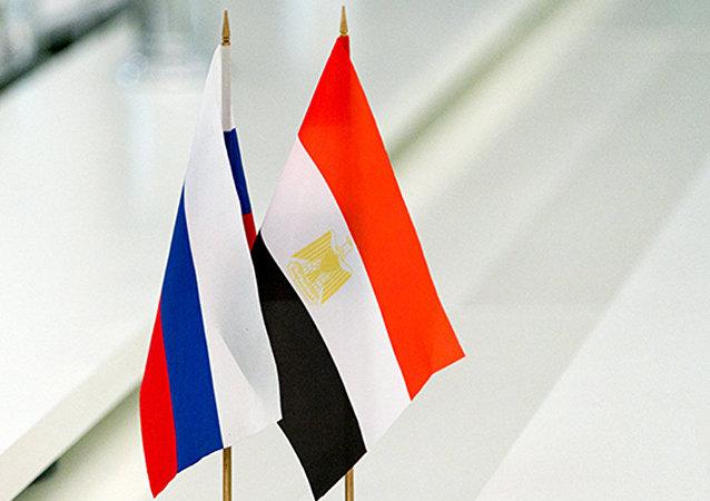 俄工贸部3月1-2日将访问埃及讨论俄在该国工业区问题