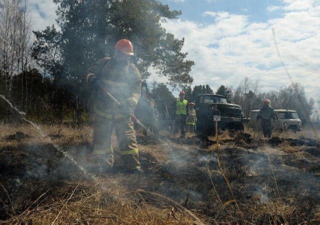 大火在西伯利亚和远东的55个林区肆虐
