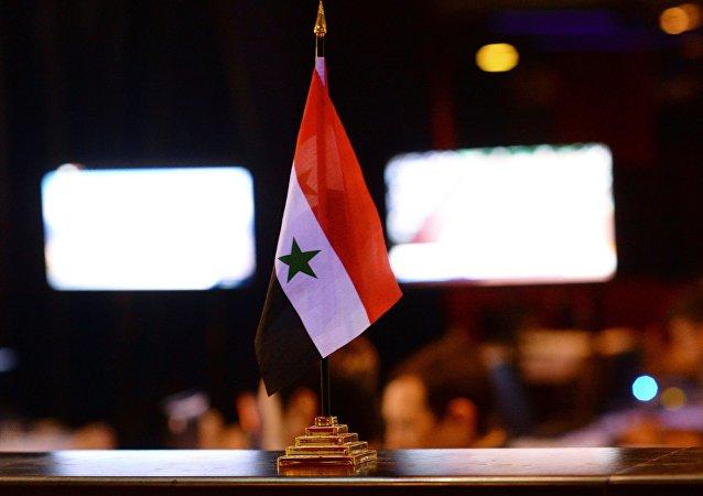 俄议员和PACE成员抵达叙利亚讨论解决冲突