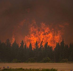 加拿大火灾