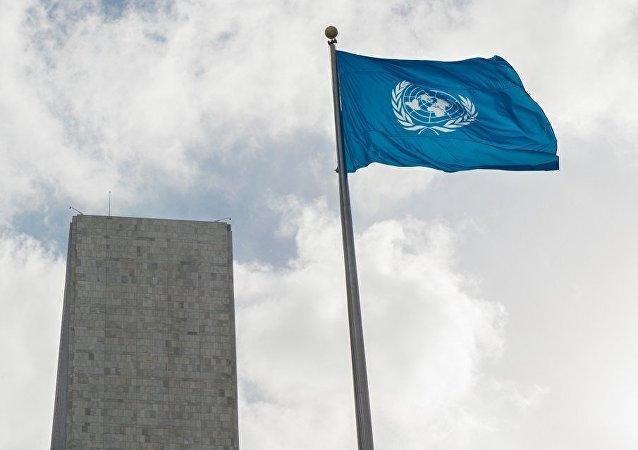 联合国代表:可持续发展目标是联合国2030年议程的核心