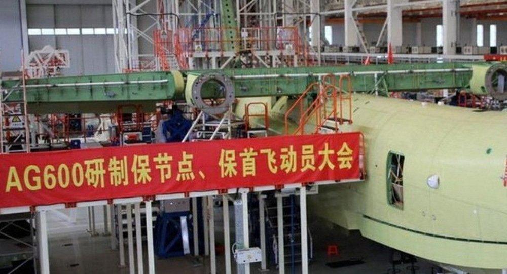 俄罗斯专家:中国因南海争端亟需水上飞机