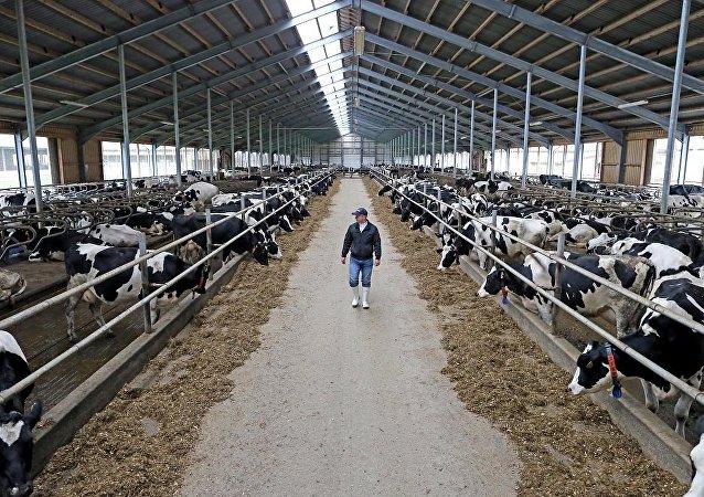 俄联邦动植物卫生监督局:中国已承认俄49个地区无口蹄疫