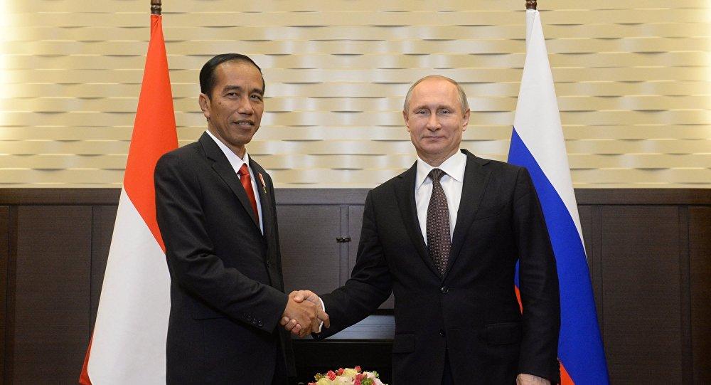 普京与印度尼西亚领导人探讨双边关系与亚太地区局势