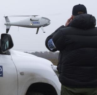 欧安组织特别观察团:武装观察员并无助于保障他们在顿巴斯的安全