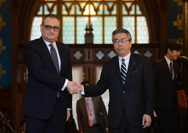 俄副外长:俄日就有关和平条约的副外长级别会谈将于6月在东京举行