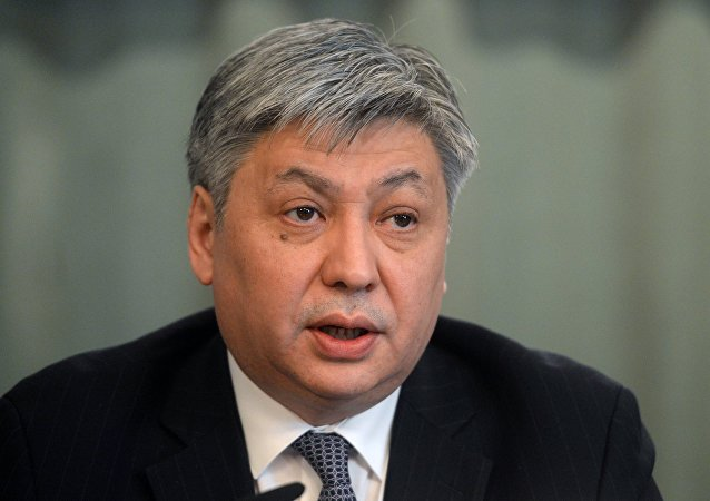 吉尔吉斯外长称中国愿向该国产品开放市场