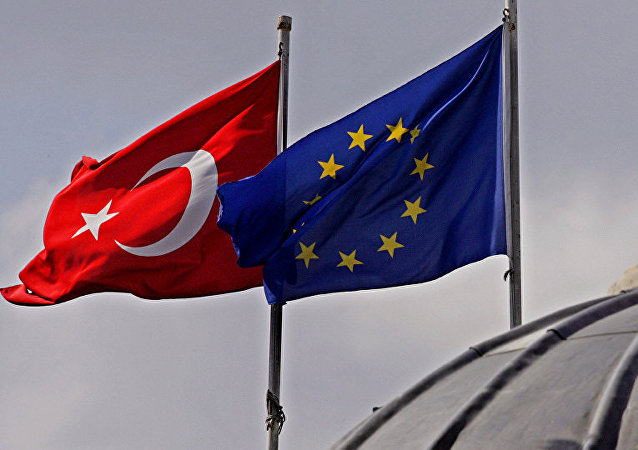 欧盟委员会专员:今年不会向土公民提供免签制度