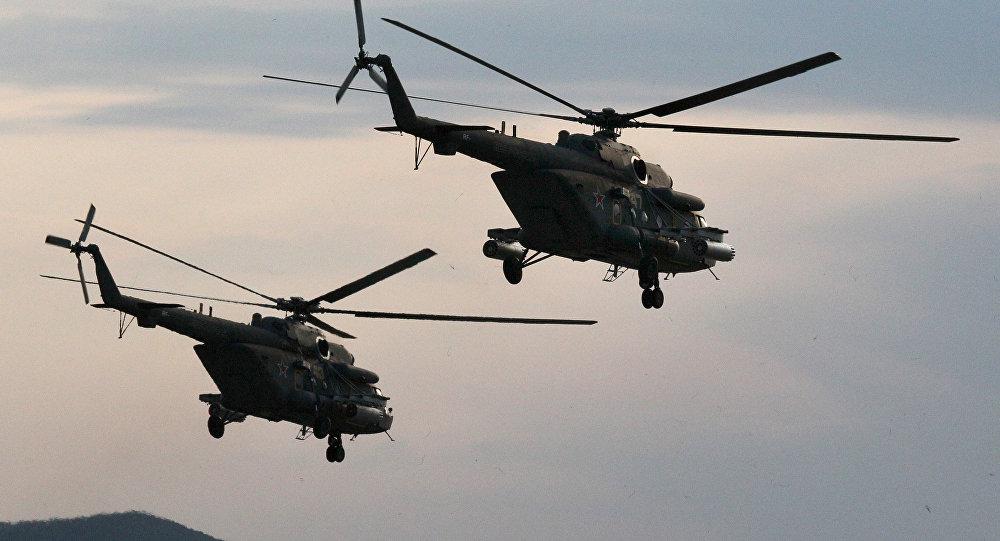 """""""终结者""""极地直升机"""