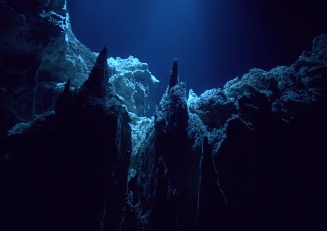 马里亚纳海沟底部发现垃圾