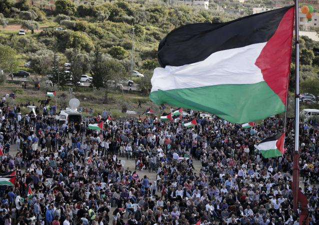 巴勒斯坦, 旗帜