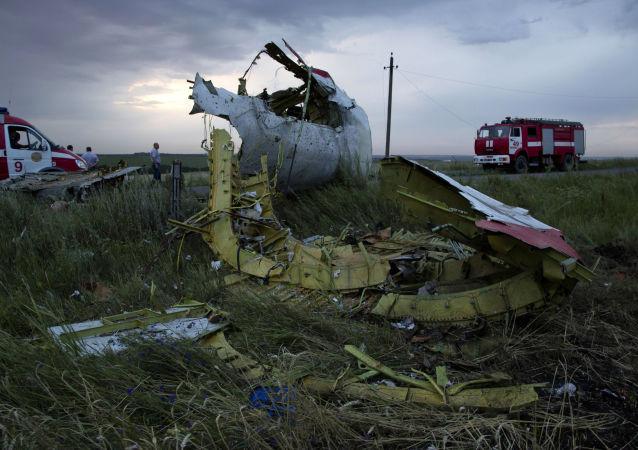 美国相信荷兰有能力对MH17客机坠毁事件进行调查