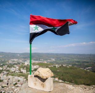 阿萨德:大马士革支持莫斯科方面提出的一系列建议