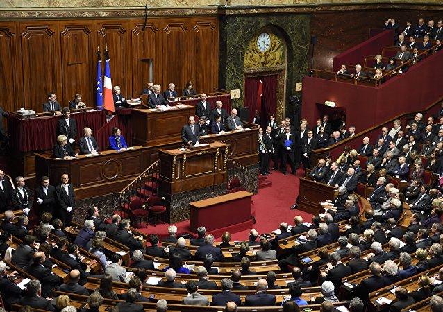 法国参议员:反俄制裁给法国经济造成损失