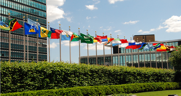 联合国官员:联合国反恐办公室不下设强力机构