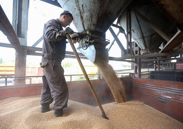 对俄罗斯农业投资利润丰厚