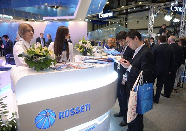 俄罗斯电网公司在圣彼得堡博览会上的展台/资料图片/
