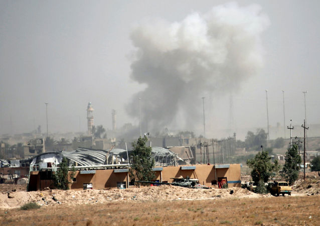 美联社:伊军已解放费卢杰市