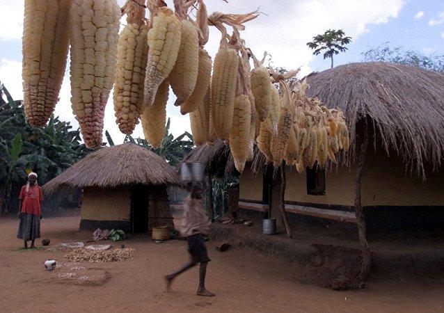 倫敦將撥款7000萬美元為非洲國家提供人道支持