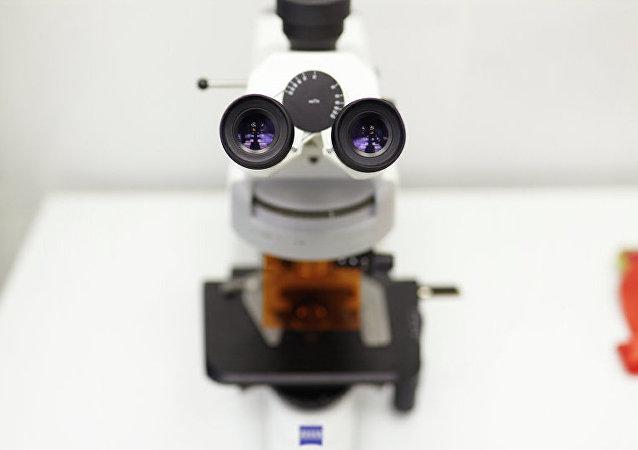 俄罗斯科学家研制成功用于药物测试的生物发光蛋白