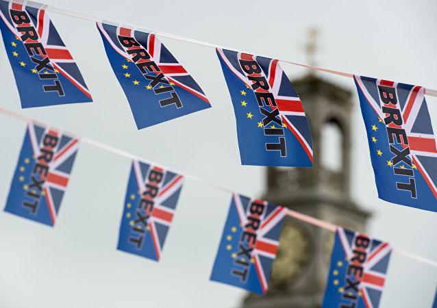 爱驻英大使:更多英国人因脱欧而希望获得爱尔兰国籍