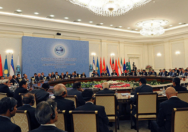 俄专家:上合各国必须建立组织研究中心