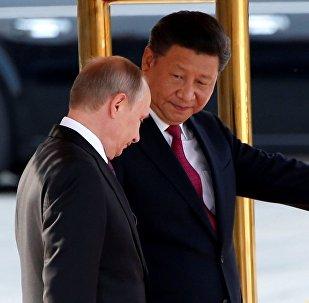 俄驻华大使:普京访华期间或与习近平讨论朝鲜问题