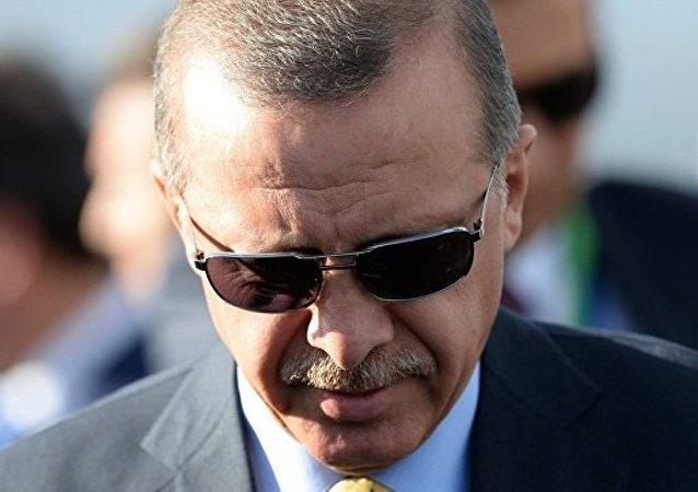 埃尔多安发言人:土耳其不打算赔偿俄被击落苏-24战机