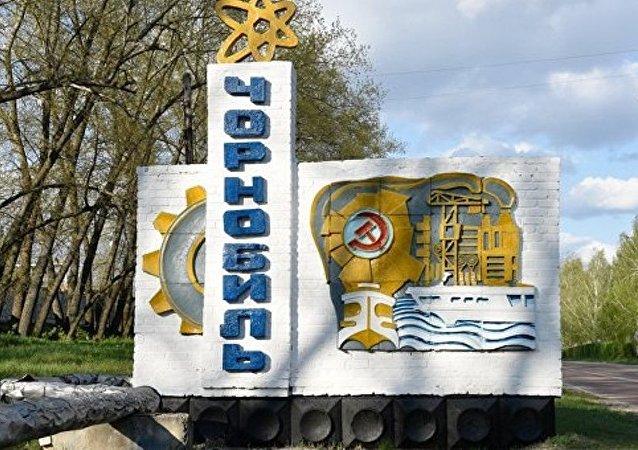 乌克兰自然部:中国对在切尔诺贝利建设发电站感兴趣