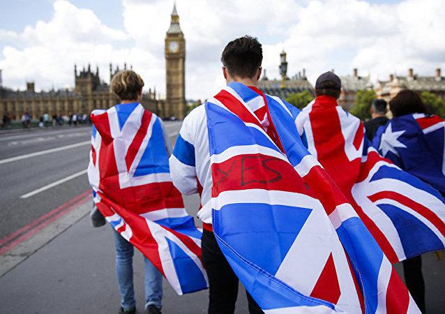 专家:欧盟关键国不会单独与英签贸易协议