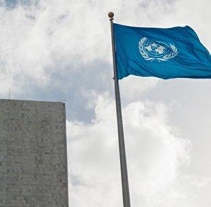联合国:朝鲜煤炭和铁矿出口因制裁转向东南亚