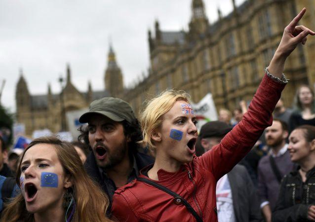 数千名伦敦人抗议英国退出欧盟