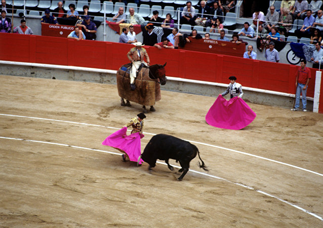 在西班牙公牛30年来首次有斗牛士被杀死