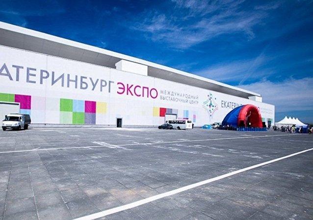 斯维尔德洛夫斯克州副州长:俄中博览会让本州与中国的合作不断扩大