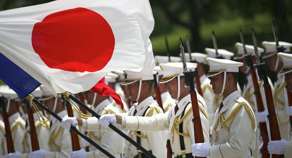 日本专家委员会支持天皇生前把王位传给继承人