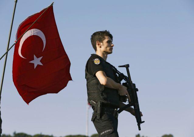 普京祝贺埃尔多安和土耳其人民成功稳定该国局势