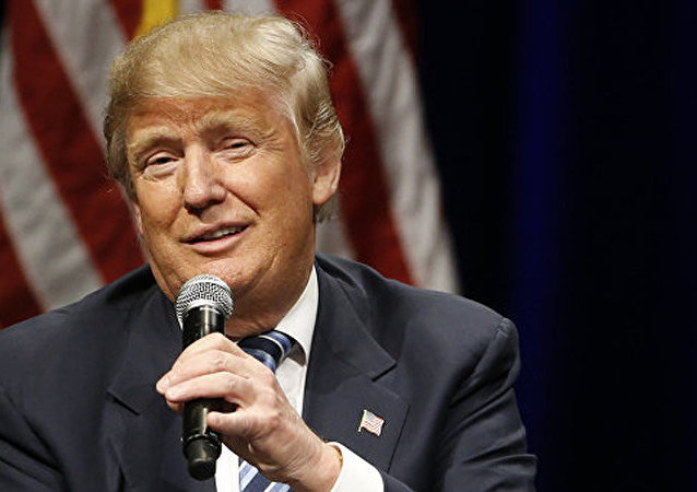 媒体:特朗普不排除授予非法移民合法地位可能性