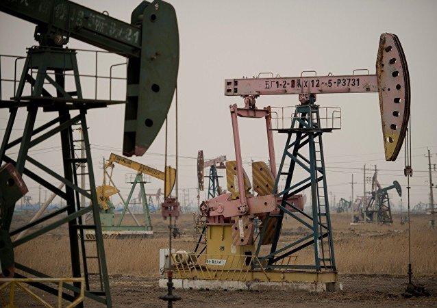专家:印度与中国竞争伊朗石油市场的领先地位