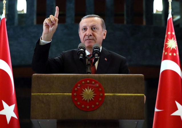土耳其总统称美国起诉其警卫事件是丑闻