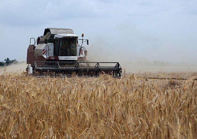 中企愿向俄鞑靼斯坦农业园投资150亿卢布