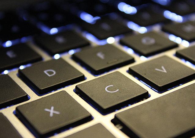 俄官员:金砖国家领导人将在9月的峰会上讨论电子商务体系的发展