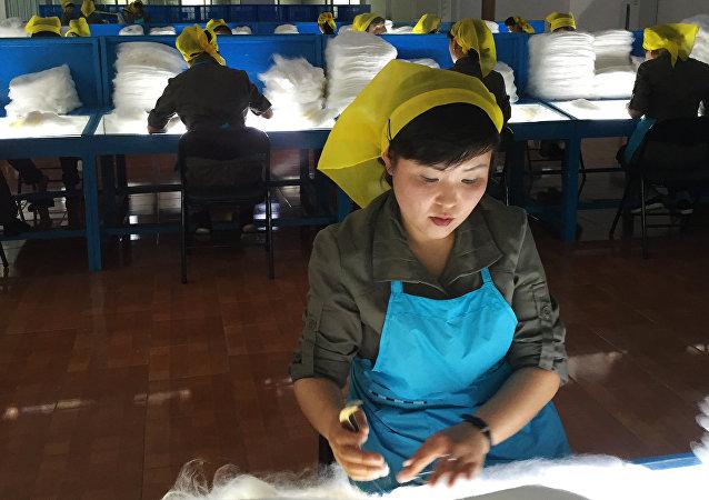 俄内务部:俄罗斯无意限制朝鲜移民入境或在俄务工