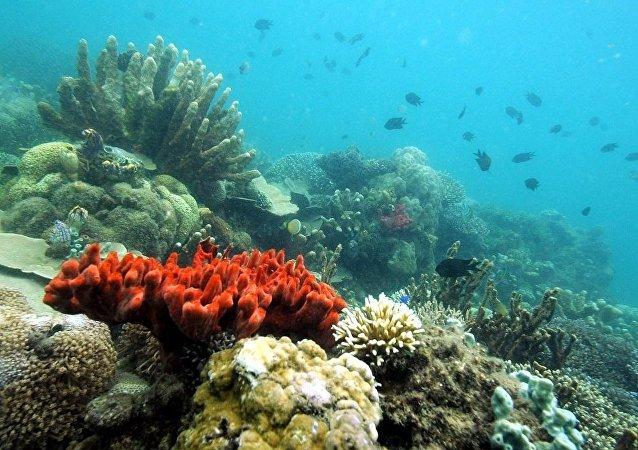 中国将研制全海深载人潜水器