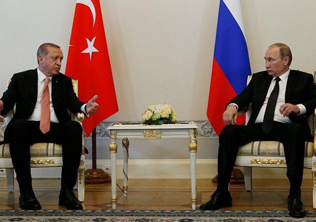 普京称土耳其促使叙局势调解取得重要进展 (资料图片)