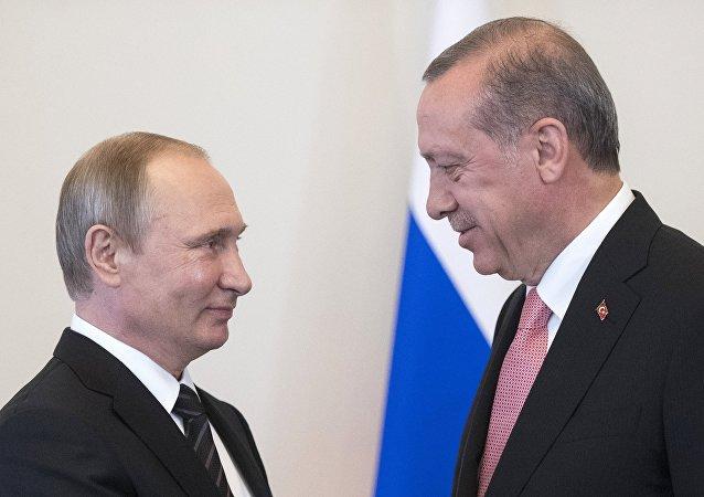 土耳其总统为会面机会和政变企图发生后的支持向普京致谢